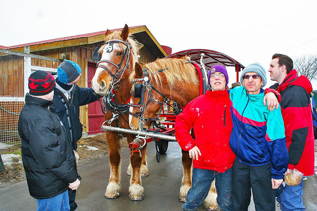 Fun Day Horses