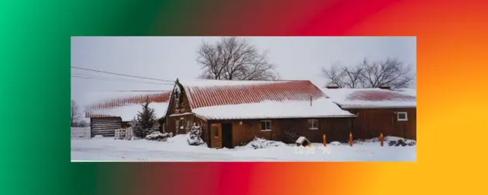 snow covered barn at new leaf